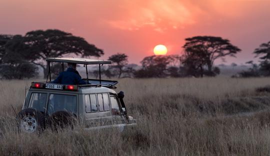 Reise nach Afrika